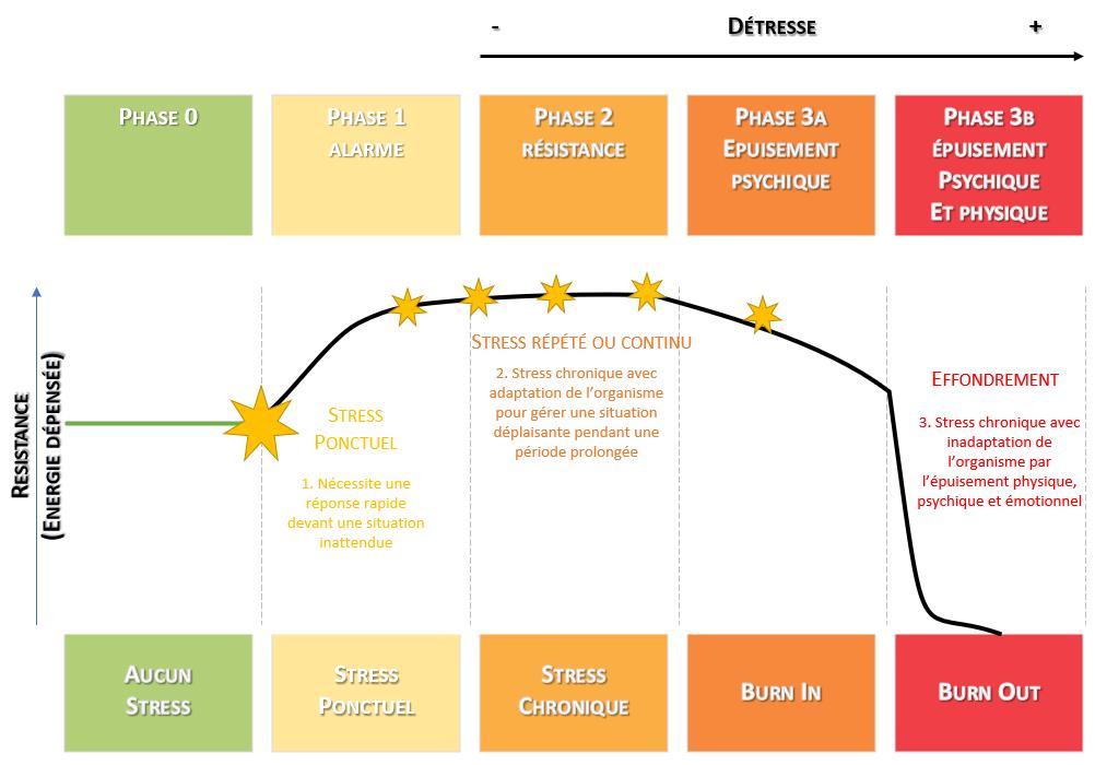 3-etats-psychologiques-du-stress-alerte-resistance-epuisement-burnout