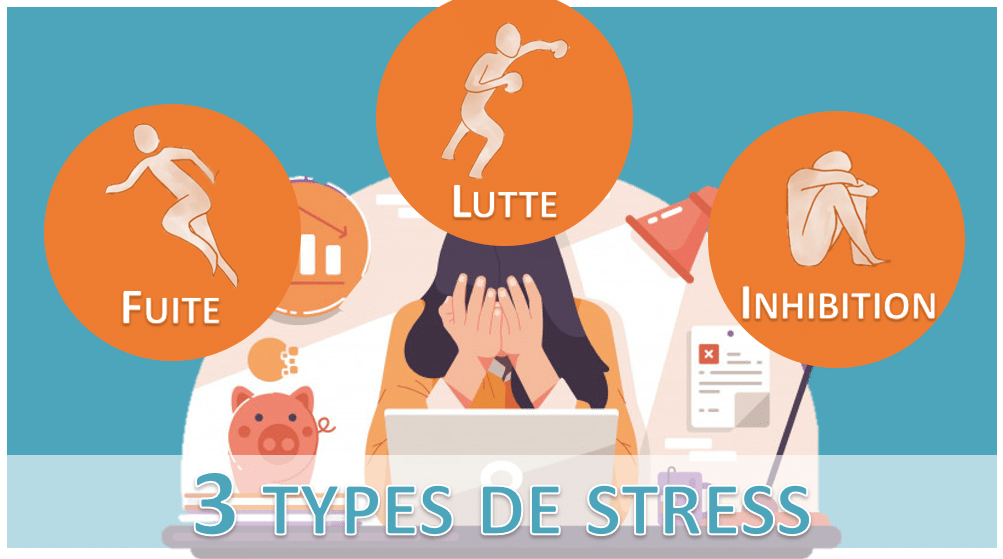 3 types de stress - fuite-lutte-inhibition