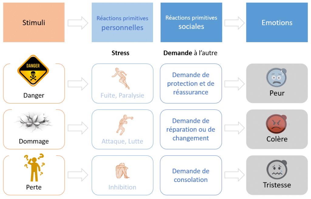 types de stress - lutte - fuite - inhibition - emotions